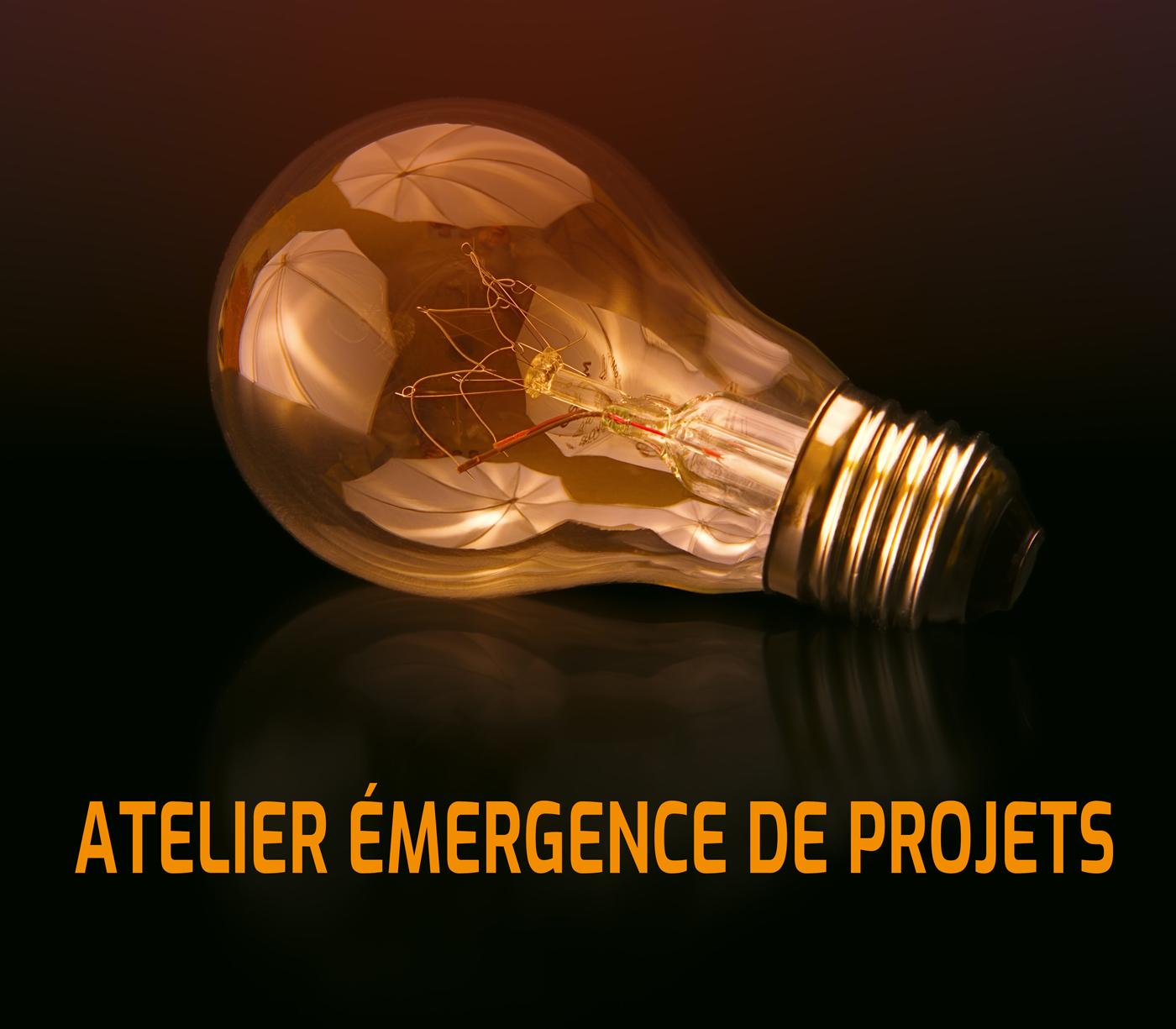 AAP R&D Collaborative Pays de la Loire : atelier émergence de projets